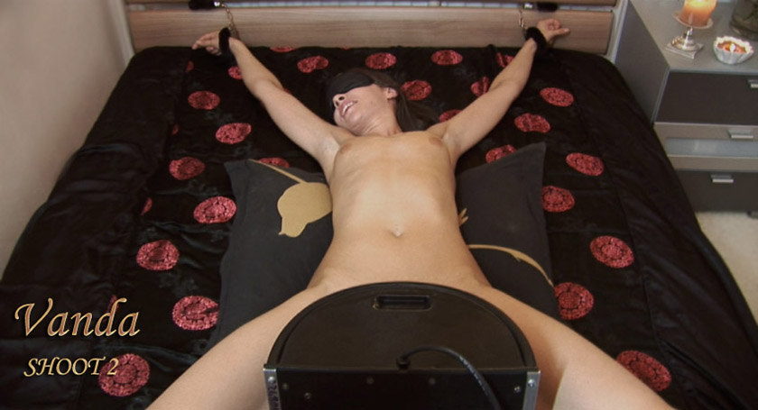 does the sybian work